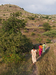 Thumb_walking_to_thakarwadi_well