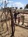 Thumb_samburu_man_at_the_well_with_kid