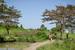 Thumb_011_130121_uganda_pallisa_day1_021