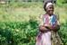 Thumb_020_130121_uganda_pallisa_day1_069