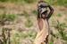 Thumb_070_130121_uganda_pallisa_day1_273