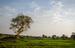 Thumb_152_130122_uganda_pallisa_day2_387