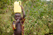 Thumb_379_130125_uganda_pallisa_day5_kachuru_class_249