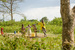 Thumb_391_130125_uganda_pallisa_day5_kachuru_class_296