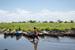 Thumb_451_130126_uganda_pallisa_day6_nagwere-ubutet_255