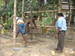 Thumb_pw118_drilling_of_the_borewell1_20.2.10_009